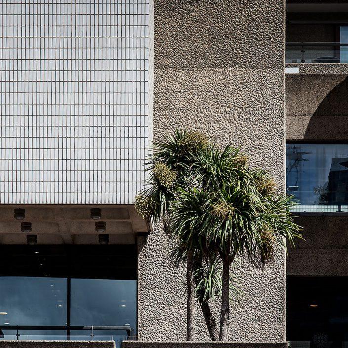 Barbican Centre London, England - Image: 0065 Colour, Concert Hall, Palm Tree, Concrete, Tile, Brutalist Architecture